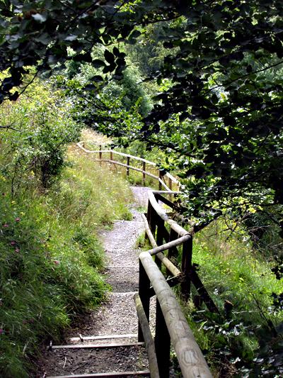 kreuzberg rhön wandern
